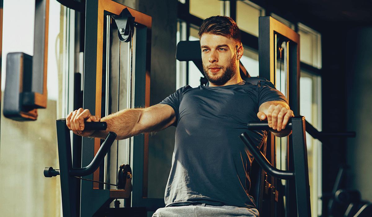 Welche Muskeln werden an der Brustpresse trainiert?