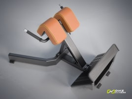 DHZ Fitness BACK EXTENSION Evost I - new with warranty