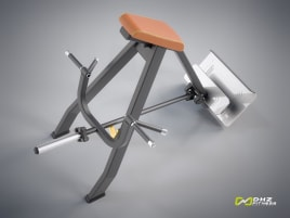 DHZ Fitness INCLINE LEVER ROW Evost I - directly from the manufacturer