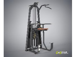 TOP POWER STATION DIP  CHIN ASSIST Evost I - directly from the manufacturer DHZ Fitness