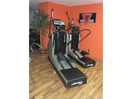 Life Fitness 9500HR Classic
