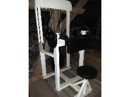 Galaxy Biceps Machine, Curl, White, Used