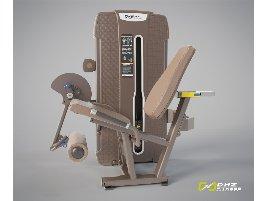 DHZ Fitness Leg Extension