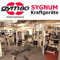 Gym80 Sygnum gym equipment, for example cable pull, leg extension, leg curl, rowing, dip chin up, biceps, hip, back extension etc., used