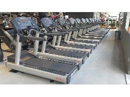 Life Fitness Gerätepark 69 Geräte Life Fitness Signature  und Integrity Cardio -   Transport europaweit möglich
