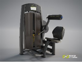 DHZ Fitness LOWER BACK Allant - NEW with warranty