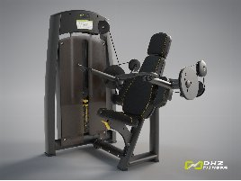 DHZ Fitness BICEPS CURL Allant - NEW with warranty