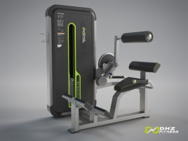 DHZ Fitness BACK EXTENSION Evost II - NEW with warranty