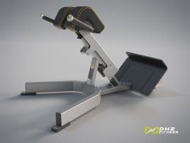 BACK EXTENSION Evost II - DHZ Fitness directly from the manufacturer