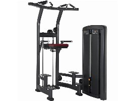 Chinning and Dip Machine Life Fitness - new and used