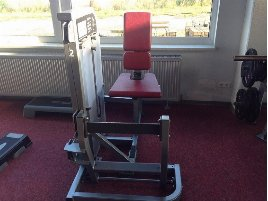 Calf Machine Life Fitness - new and used