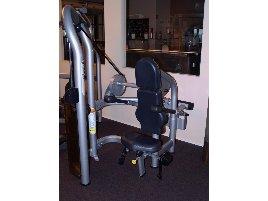 Dip Machine Matrix Fitness - new and used