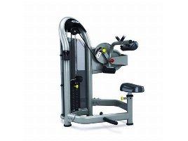 Bauchmuskelmaschine der Marke Matrix Fitness - neu und gebraucht