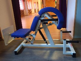 Hyperextension Bench Norsk - new and used