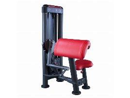 Biceps Machine Panatta - new and used