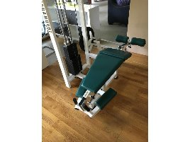Leg Curl Paramount - new and used