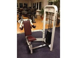 Lateral Raise Machine Paramount - new and used