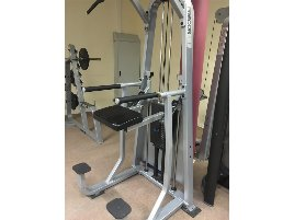 Chinning and Dip Machine Precor - new and used