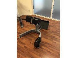 Hyperextension Bench Precor - new and used