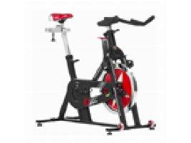 Schwinn, Elite Indoor Cycle, Good Condition