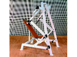 L+K Shoulder Press with Weights Classic Line