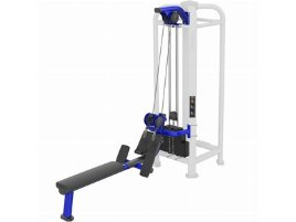 MJ Dual Pulley Row