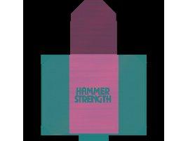 Hammer Strength HD Elite - 4x8 Plattform - Hammer Logo