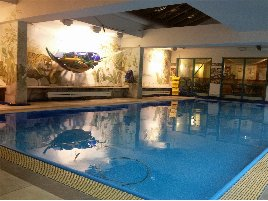 Mit Schwimmbad! Gesundheits- und Wellnessstudio im Süden Nürnbergs aus Altersgründen zu verkaufen!