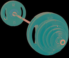 APUS Mercury Weight Plates with POLYURETHANE Coating NEW!! TOP!!