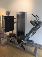 Leg press Sygnum gym80 sitting/lying