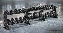 Modulartiger Ständer für Kurzhanteln Bauer Fitness
