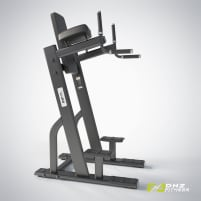 DHZ Fitness vertical Knees up - dip – Directly from the manufacturer