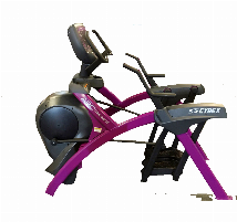 Cybex Arc Trainer 625A
