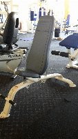 Cybex training benches.