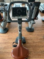 Well serviced Technogym Bike and Recline Excite - private sale