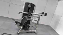 Life Fitness Signature Series ~ Overhauled in desired color ~ 0% financing for studios ~ Upholstery NEW