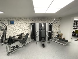 Technogym Wall (w.Legpress)