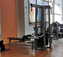 TOP! Gym80 Astrosport adjustable cablecross cable crossover with 95kg per side cable pull double tower