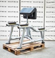 Matrix Fitness | Magnum Serie | Standing Arm Curl (MG-A71) aus Studioauflösung | Iced Silver | 2016