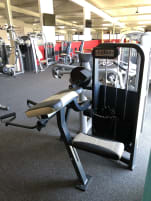 Biceps machine from Cybex