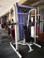 1x TechnoGym Multi Power Rack