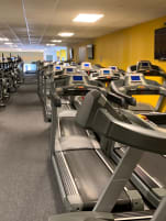 Very large MATRIX Cardio Package + Livestrong Indoor Bikes