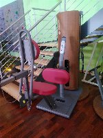 Multifidus-Trainer - 907