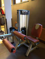 Seated Leg Curl machine - BH FITNESS