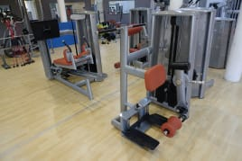 Gym80 Sygnum leg curl standing single