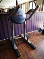 1 x Life Fitness BOSU (2012)