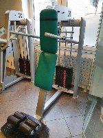 Dioline DL 435 Dips / DL325 Rudern / DL355 Rückenstrecker / DL115 Schulterdrücken