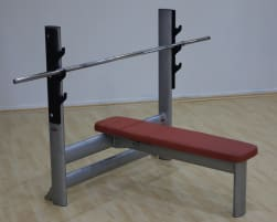 Gym80 Basic flat bench spinning lathe