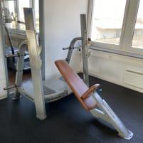 Nautilus Olympia incline bench