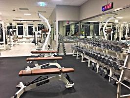 Fitnessgeräte der Marke Npg E-Line- Freigewicht-Geräte, Steckgewicht-Gerätel, Bänke- NEU
